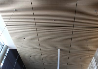 Max Plank ceiling work